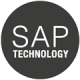 Versione SAP